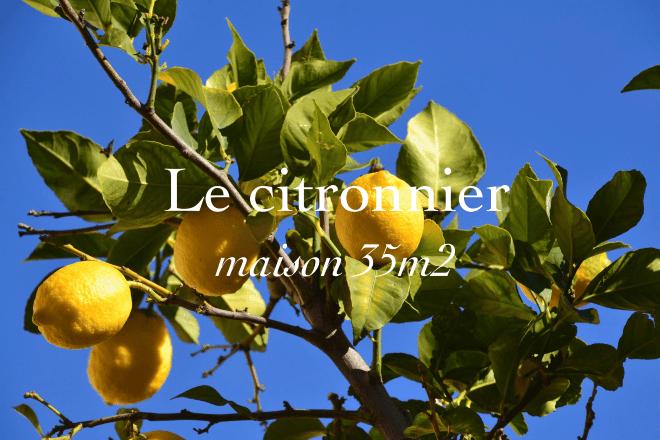 Le citronnier, maison 35 mètres carrés